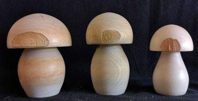 champignons-3-x